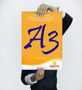 Cartaz A3 Papel Off-Set 30X42 colorido  Sem refile