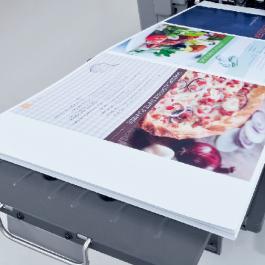 Folha Impressão Laser Ningbo 32x46 4x4 cores  Sem refile